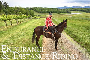 Endurance and Distance Riding