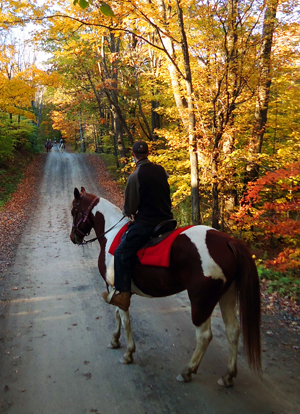 Riding in the Finger Lakes National Forest in the Fall
